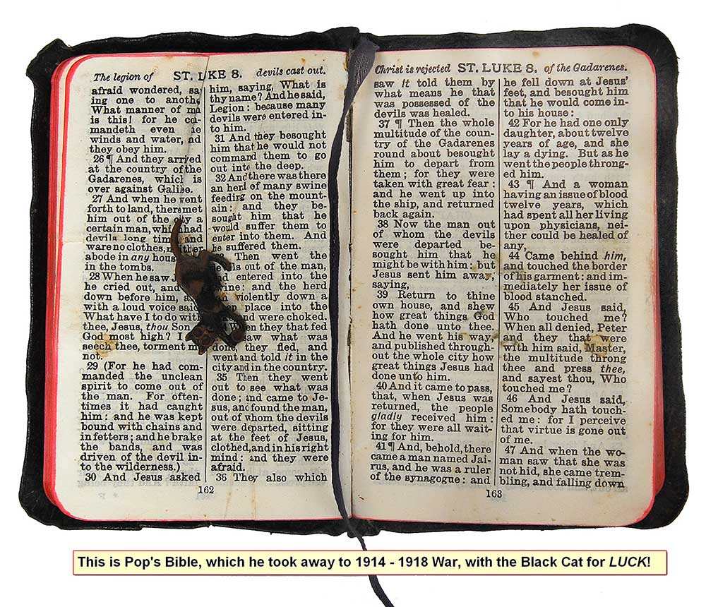 Samuel Bower's bible