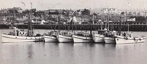 Robb Boats at Timaru in the 1950s