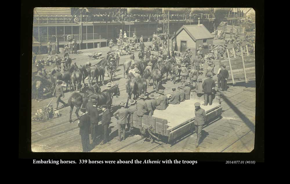 Embarking horses.  339 were on board the Athenic with the troops